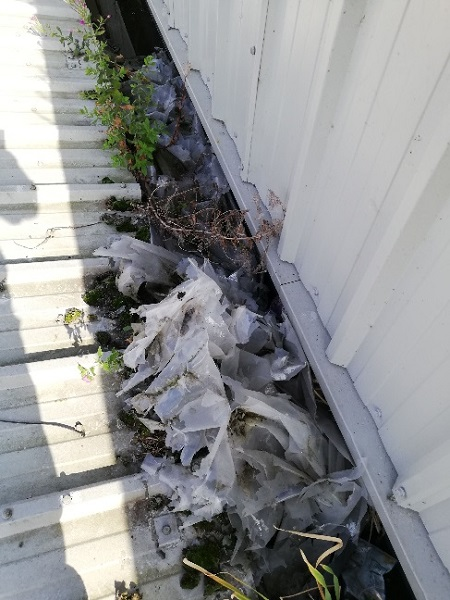 Arborforest roof condition 2