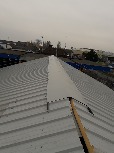 Pelagia new processing plant roof works ridge installation